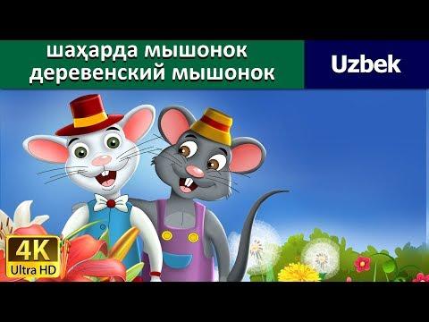 Shahar sichqoncha mamlakat sichqonchasi - узбек мультфильм - узбек эртаклари - Uzbek Fairy Tales
