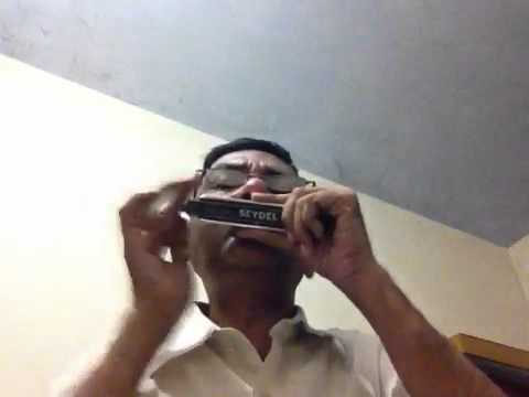 Tumse milke:Parinda plyed on chromatic harmonica in key F
