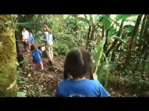 Environmental Education at the Cloud Forest School