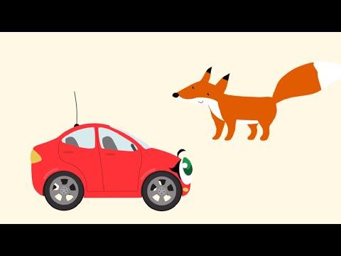 БИБИКА - Кролик. Лиса. Волк и Медведь - Развивающий мультик для детей про машинки и животных