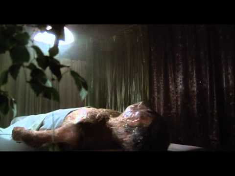 Invasion of the Body Snatchers (1978) Pod Body Opens Its Eyes