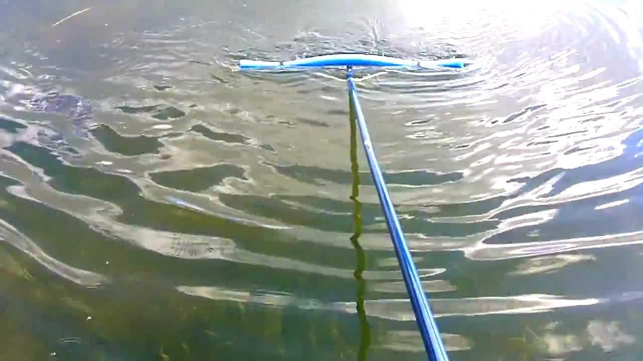 how to get to waioka pond