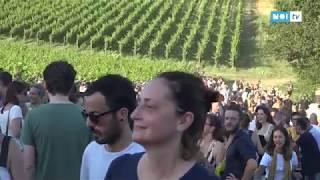 Alla Tenuta Lenzini di Gragnano la grande festa di LuccaBioDinamica
