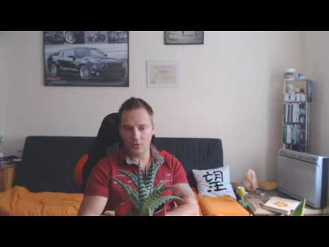 Heilpflanzen - für einen gesunden und ruhigen Schlaf