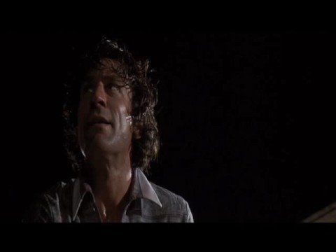 GREAT FIGHT SCENE: Robert DeNiro In CAPE FEAR