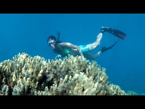 Waterfalls and Snorkelling Samoa 2013, Travel Video Guide