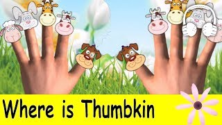 download lagu Where Is Thumbkin  Family Sing Along - Muffin gratis