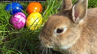 Is Easter Pagan?
