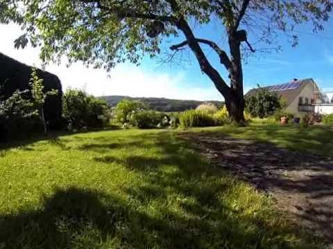 Eine Reise Durch Unserem Garten Mit