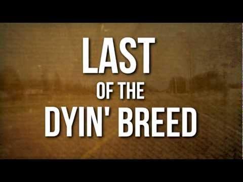 Lynyrd Skynyrd // Last of a Dyin' Breed (OFFICIAL LYRIC VIDEO)