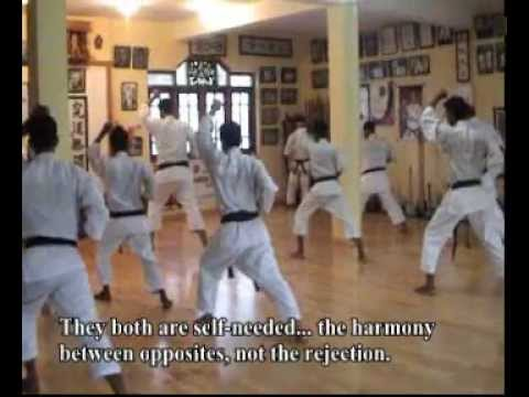 Okinawa Karate Shorin Ryu Kyudokan - Oscar Higa Sensei Interview- Part 3 of 4 (English subtitles) Image 1