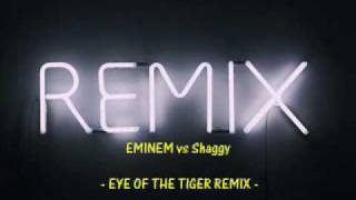 EMINEM vs Shaggy - Eye Of The Tiger REMIX
