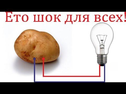 Свет из картошки супер гениально просто разрыв