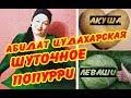 Абидат Шахбанова Цудахарская Даргинское шуточное попурри mp3