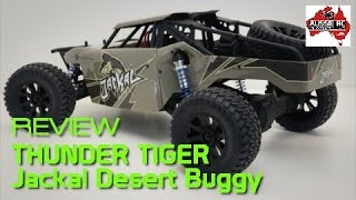 Review: Thunder Tiger Jackal Desert Buggy