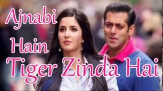download lagu Ajnabi Hain  Tiger Zinda Hai Movie Song  gratis
