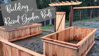 Building Raised Garden Beds on a Budget