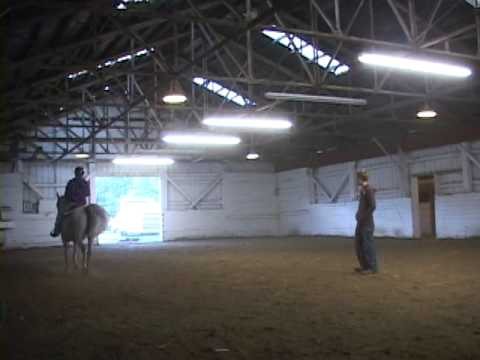 my first horse riding lessons at midnite sun horse training center