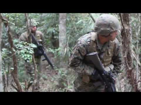 Marines Navigate the Okinawa Jungle