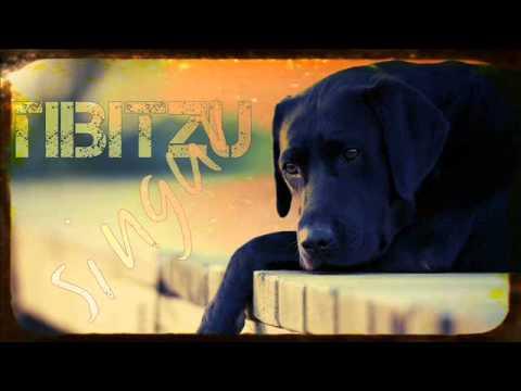 TIBITZU - Singur