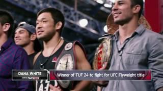 Dana White: The flyweight division isn