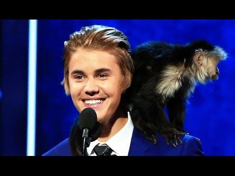 Justin Bieber Roast Top 5 Disses video