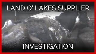 Land O'Lakes Employee Pride
