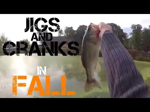 Bass Fishing- New Pond in Northern California