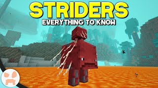 Minecraft's New LAVA STRIDER MOB! | Complete Strider Guide - Minecraft 1.16 Nether Update