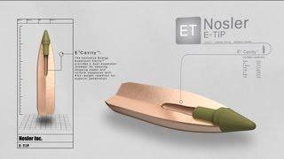 Nosler E-Tip Hunting Bullet