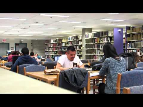Gay Porn In The Library Prank Mp4 1280x720 video