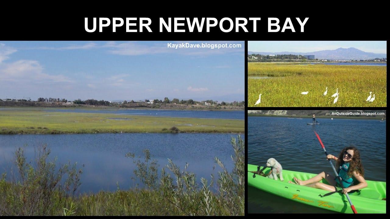 UPPER NEWPORT BAY  Newport Back Bay    Newport Beach   Kayak  Stand Up Paddle Board  SUP  Canoe