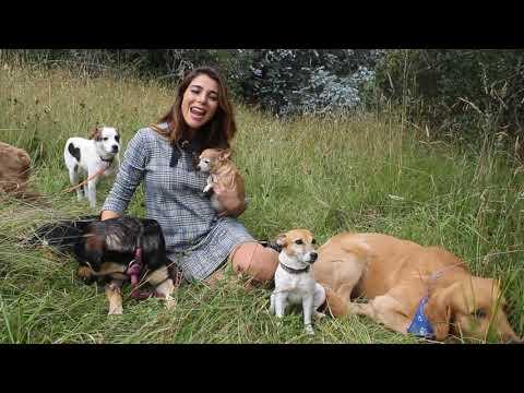 Marilyn Patiño en Mascotas de los famosos