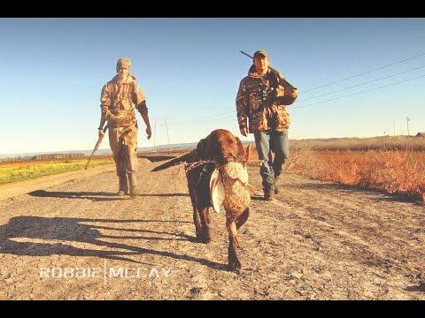 California Deer Drawing California Duck Hunting