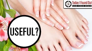 Why Do Nails on Your Fingers and Toes Grow at Different Rates?