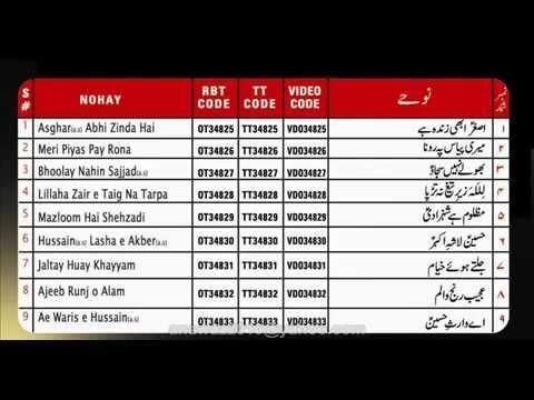 Nadeem sarwar nohay 2012 promo Ayaz hussain jafri nohay 2012 volume