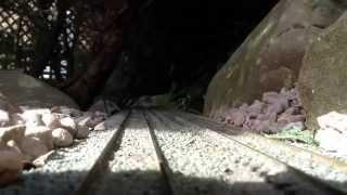 Some more shots of my OO gauge garden railway