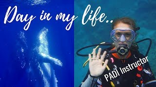 Day in the Life of a PADI SCUBA DIVING INSTRUCTOR in Africa