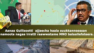 Ethiopia - ESAT Oduu Afaan Oromoo Wiixata 02 Nov 2020