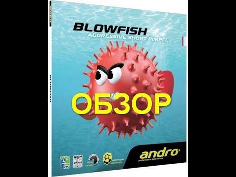 andro blow fish