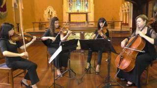 Pachelbel Canon Pachelbel By Amicus String Quartet