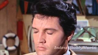 Watch Elvis Presley Indescribably Blue video