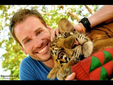 """Tiger Temple & Bangkok – Thailand: part 3 ~ NORM'S """"All over the World"""" BLOG"""
