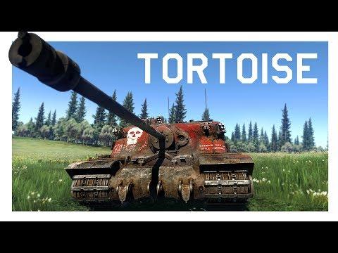 WT: Tortoise- The wall thumbnail