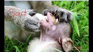 MG! Flit's mom fight & Tear her baby mouth so hurt   Pitiful small baby Flit hungry food