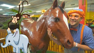Blippi Learns about Jungle Animals for Kids | Educational Videos for Toddlers