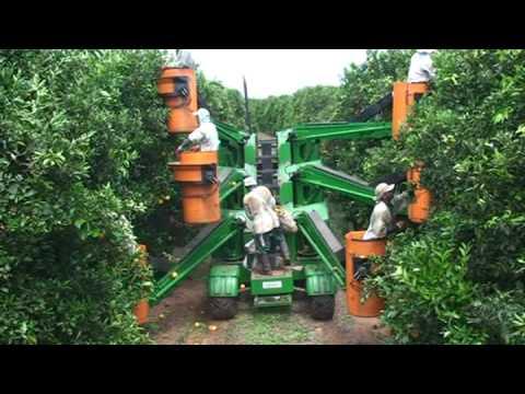 Maquina sumo laranja industrial