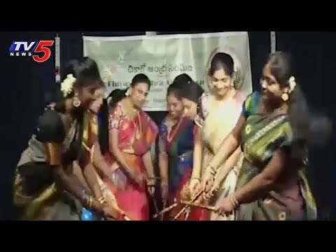 Chicago Andhra Association Conducted Event in Aurora Balaji Temple | USA | TV5 News