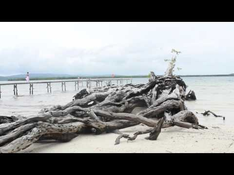 Solomon Islands: Papatura Island Retreat (2015)