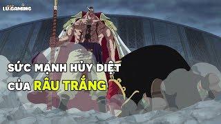 Tất Tật Tật Về Râu Trắng - Người Đàn Ông Mạnh Nhất Thế Giới - Khám Phá One Piece #7